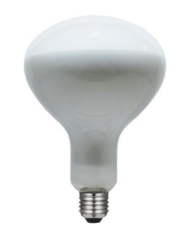 R125 LED FULL GLASS 8W.